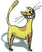 Cat smiling image