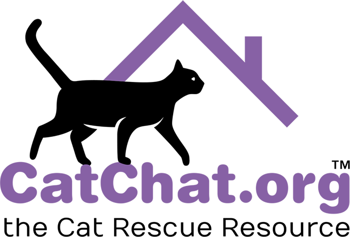 Cat Chat logo - links to site